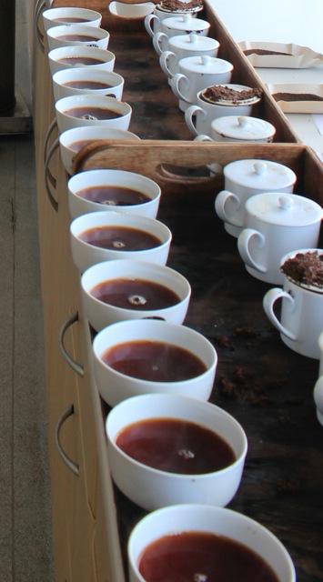 Expert tea blenders taste and choose each individual tea that goes into the blend.